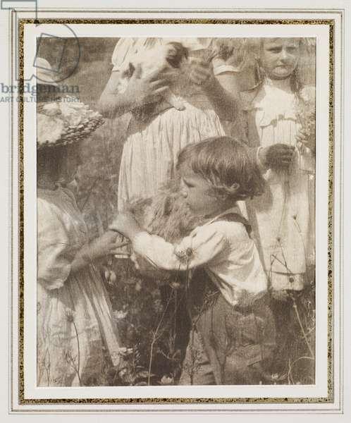 Happy Days, c.1902 (platinum print)