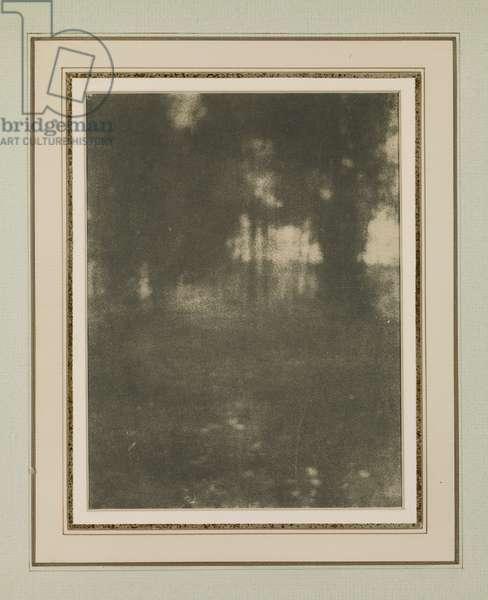 Untitled, 1901 (gum bichromate print)