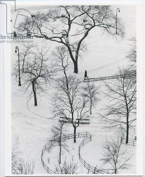Washington Square, New York, 1954 (silver gelatin print)