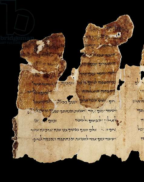 Portion of the Temple Scroll, Dead Sea Scrolls, Qumran (parchment)