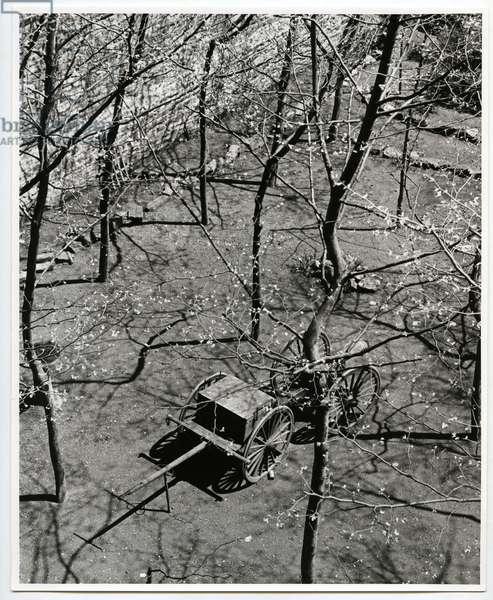 Beekman Terrace, New York, 1938 (silver gelatin print)
