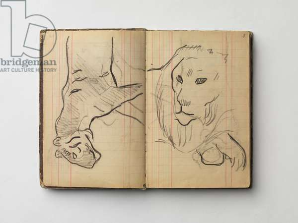 Lion, illustration from the 'Arles and Brittany Sketch Book', 1888-1901 (charcoal & pencil on paper)