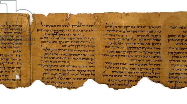 Habakkuk Commentary, columns 5-8, Qumran Cave 1, 1st century BC (parchment)