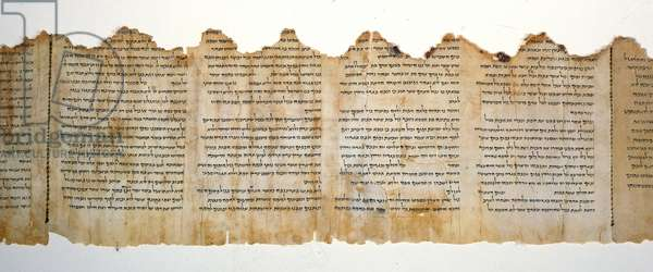 Section from the Temple Scroll, Qumram, c.01st century BC - 1st century AD (parchment)