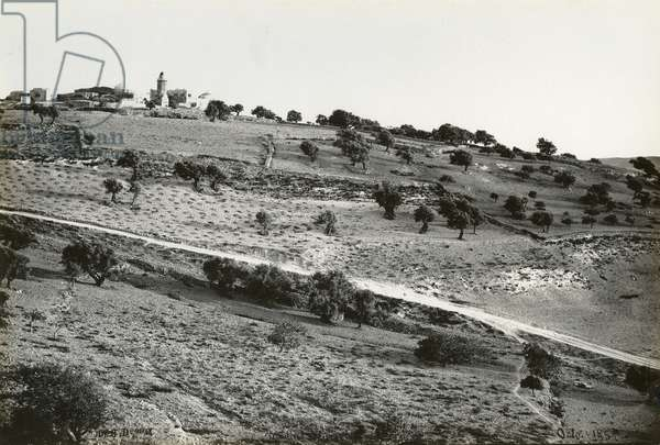 Mount of Olives, 1858 (b/w photo)