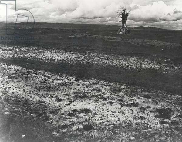 First Solitude, 1965 (gelatin silver print)