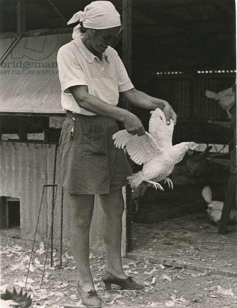 Women's Farm, c.1940 (b/w photo)