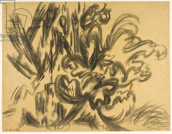 Study for Flowering Stump, c.1943-48 (charcoal on paper)