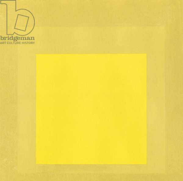 Homage to the Square: Yellow Signal, 1962 (oil on board)