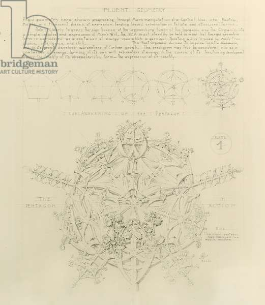 System of Architectural Ornament: Plate 4, Fluent Geometry, 1922-23  (graphite on paper)