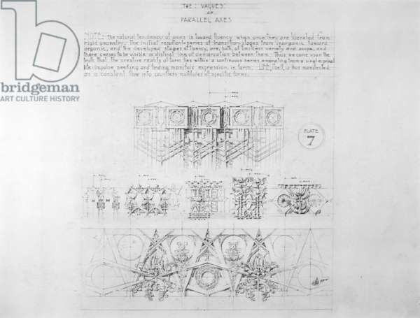 System of Architectural Ornament: Plate 7, The Values of Parallel Axes, 1922-23 (graphite on strathmore paper)