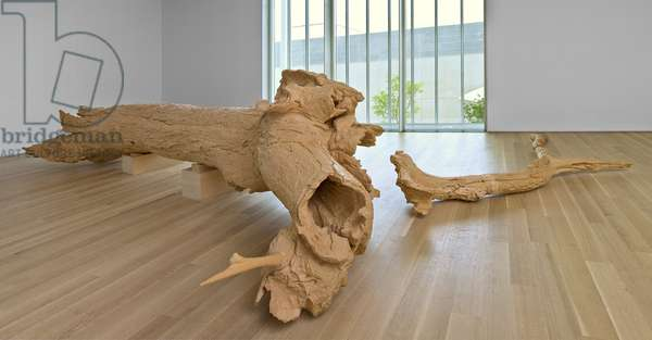 Hinoki, 2007 (cypress wood)