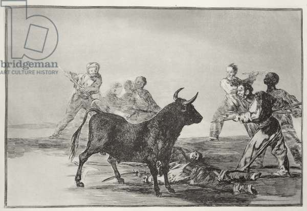 The rabble hamstring the bull with lances, sickles, banderillas and other arms, plate 12 of 'The Art of Bullfighting', pub. 1816 (etching)