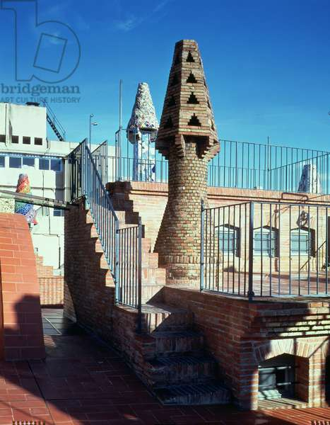 View of the chimneys on the western sector of the roof of the palace, 1885-89 (photo)