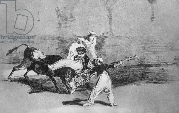 A Moor caught by the bull in the ring, plate 8 of 'The Art of Bullfighting', pub. 1816 (etching)
