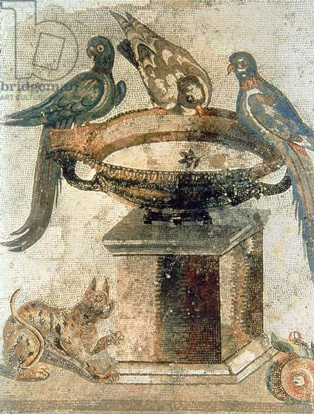 Birds and an ambushing cat, from Pompeii, 1st century AD (mosaic)