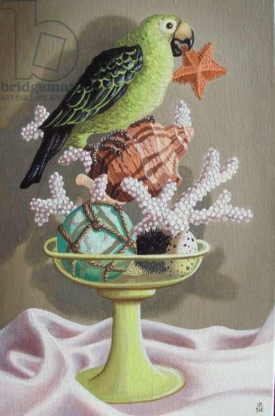 Compotier au perroquet