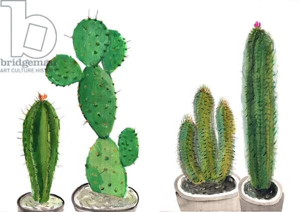 Cactus 2, 2012 (w/c on paper)