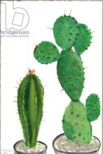 Cactus 5, 2012 (w/c on paper)