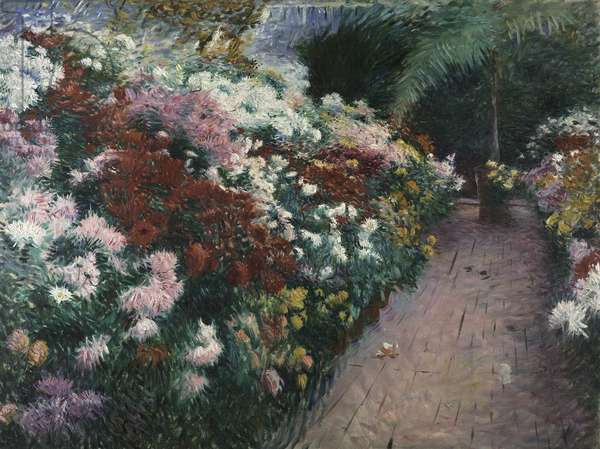 Chrysanthemums, 1888 (oil on canvas)