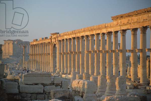 The colonnaded central street (photo)