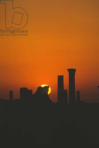 Dawn (photo)