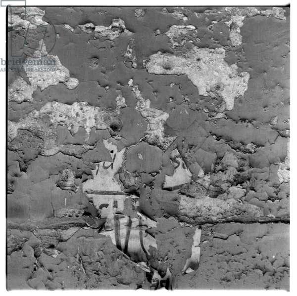 Image of wall surface, Paris 1956