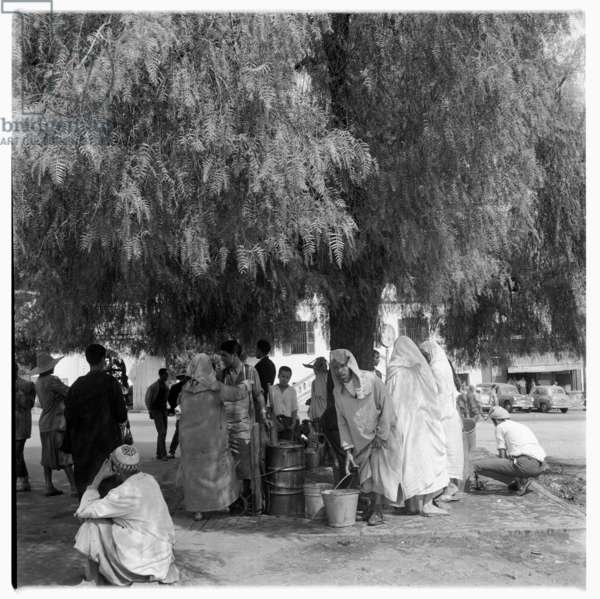 People gathered under a tree on the side of a road, Tangier, early 1960's (b/w photo)