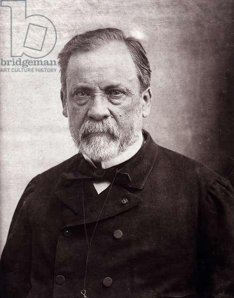 Portrait of the scientist Louis Pasteur (1822-1895), 1890 (photo)