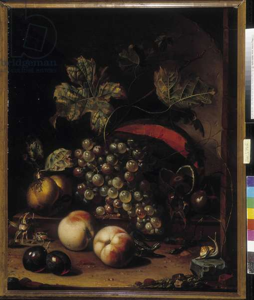 Still life of fruits and animals. Painting by Mignon Abraham (1640-1679). Musee des Beaux Arts, Palais Longchamp. Marseille (cm 63x52) Flemish and Dutch school of the 17th century