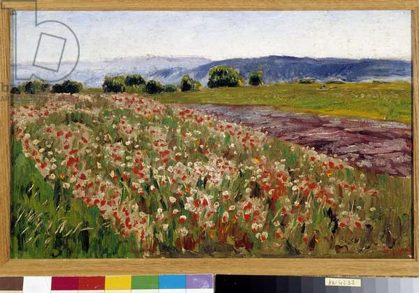 The field of poppies (painting)