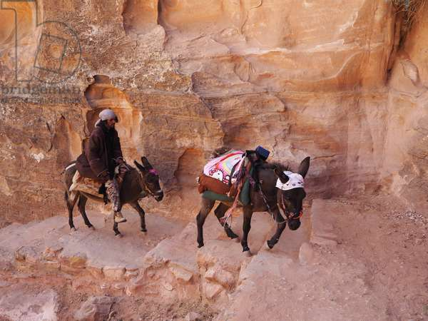 Jordan: Bedouin and donkey on a trail. Petra site
