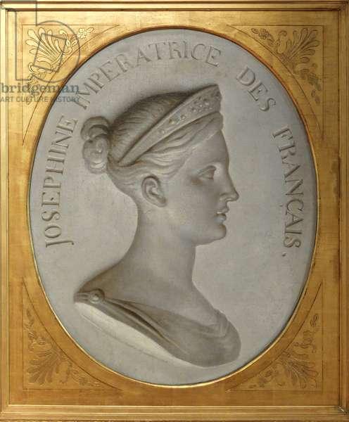 Trois Ilets, Domaine de la Pagerie, portrait of Josephine de Beauharnais - Martinique, island of the French Antilles