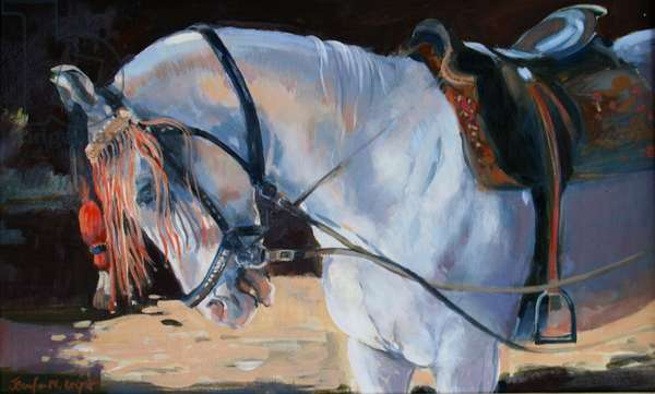 Marwari Horse, Rajasthan, 2010 (oil on canvas)
