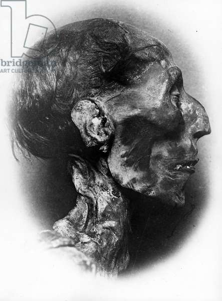 Mummified Head of Ramses II, c.1881 (b/w photo)