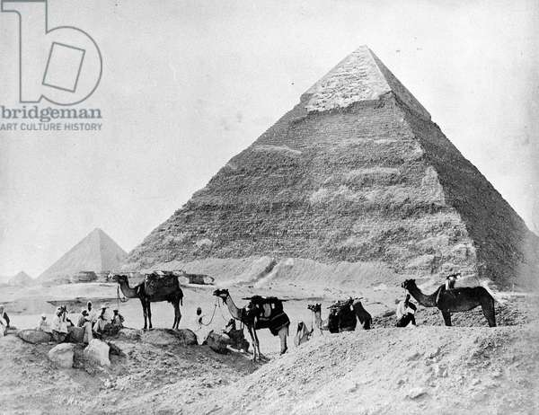 A Caravan of Camels in front of the Pyramids at Giza, late 1870s (b/w photo)