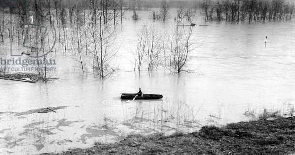 Flooded Area Between Memphis, Tennessee and Forrest City, Arkansas, 1937 (b/w photo)