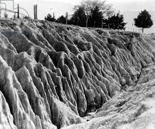 Erosion, Mississippi, 1936 (b/w photo)
