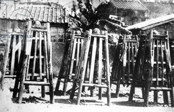 Exhibition of Executed Chinese Criminals, c.1905-10 (b/w photo)