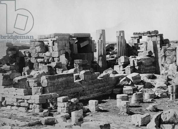 The Lotus Columns (b/w photo)