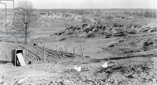 Erosion near Tupelo, Mississippi, 1936 (b/w photo)