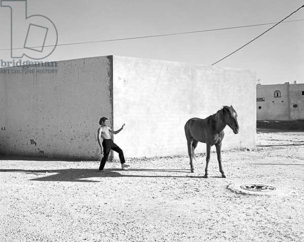 Pferd-Traum 6, 2015 (b/w photo)
