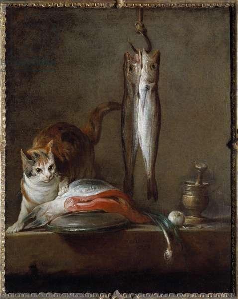 Cat with slice of salmon, two mackerels, mortar and pestle Painting by Jean Baptiste Simeon Chardin (1699-1779) 1728 Sun. 0,79x0,63 m Madrid. Musee Thyssen Bornemisza - Cat with a slice of salmon, two mackerels, mortar and pestle. Painting by Jean Baptiste Simeon Chardin (1699-1779), 1728. 0.79 x 0.63 m. Thyssen Bornemisza Museum, Madrid