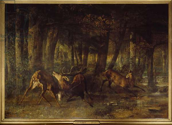 Spring rut, deer fight. Painting by Gustave Courbet (1819-1877), 1861. h s/t. Sun: 3,55 X 5,07m. Paris, Musee d'Orsay.