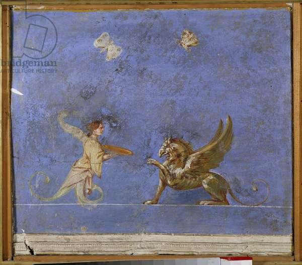 Mythology: a siren and a griffon, fabulous creatures. Detail of an antique fresco prelevee. Paris, Louvre Museum