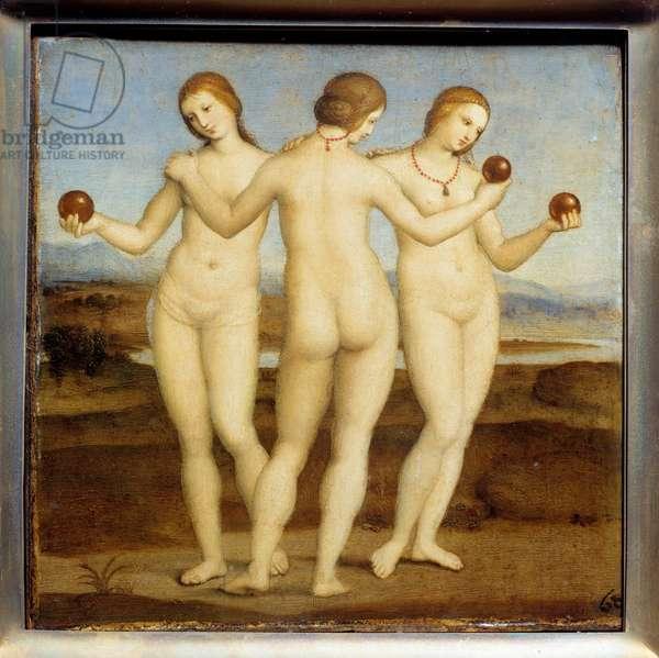 The three graces Painting by Raffaello Sanzio dit Raphael (1483-1520). 1504-1505. Chantilly. Conde Museum.