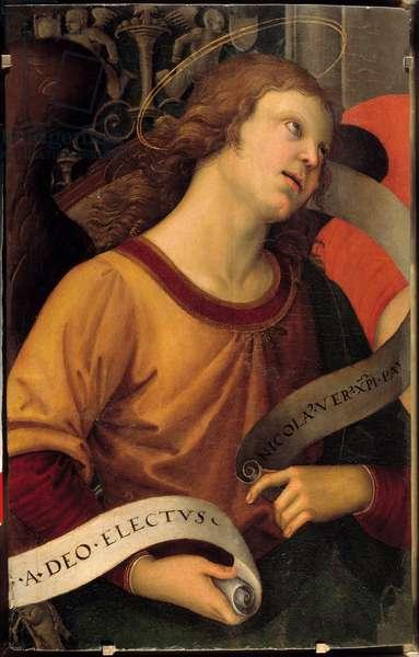 An angel. Fragment of Baronci's altarpiece. Painting by Raffaello Sanzio dit Raphael (1483-1520), 1500-01. Oil on wood. Dim: 0.58 X 0.36m. Paris, Musee Du Louvre