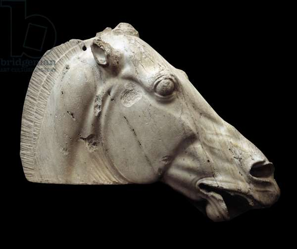 Greek art: horse head of Selene from the Parthenon of Athenes. London, British museum.