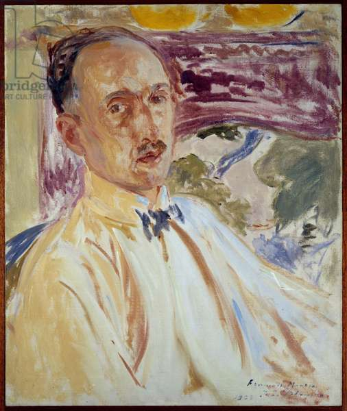 Study for the portrait of Francois Mauriac (1885-1970), French writer. Painting by Jacques Emile (Jacques-Emile) Blanche (1861-1942), 1923. Oil on canvas. Dim: 0.54 x 0.45m. Rouen, Museum of Fine Arts
