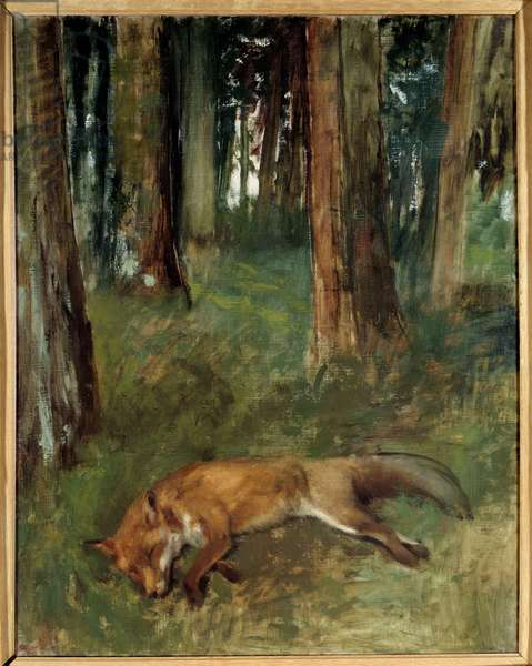 Dead fox in a wood Painting by Edgar Degas (1834-1917) 19th century Sun. 0,92x0,63 m Rouen, Musee des Beaux Arts